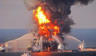 USA verklagen BP und andere Firmen wegen Ölpest (Foto)