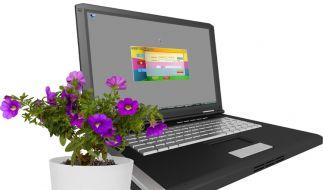 USB-Blumetopf (Foto)