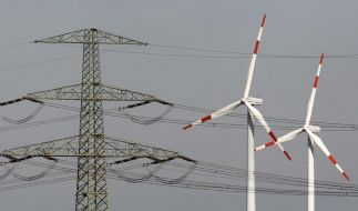 Verband: Energiewende braucht zügigen Netzausbau (Foto)