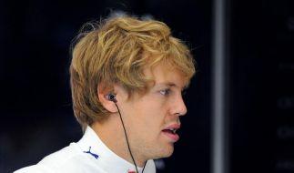 Vettel mit Defekt  (Foto)