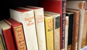 Viele Raubbände in der Anna Amalia Bibliothek (Foto)