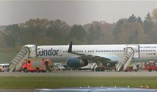 Vogel gerät ins Triebwerk: Ferienflieger kehrt um (Foto)