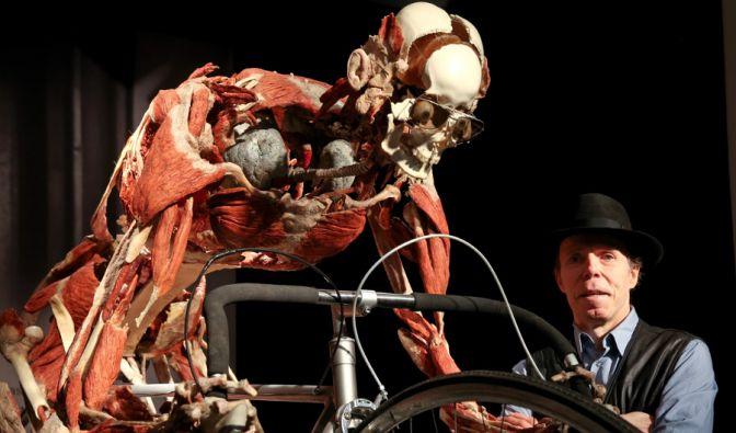 Vom 16. Mai bis 15. Oktober 2014 zeigt Gunther von Hagens in Hamburg seine Ausstellung «Körperwelten - eine Herzenssache». (Foto)