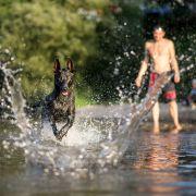 30-Grad-Hitze! Der Sommer legt nochmal richtig los (Foto)