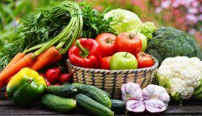 Ernährungs-Check