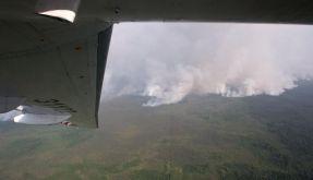 Waldbrände in Russland wüten weiter (Foto)