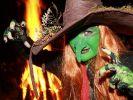Walpurgisnacht: Hunderte Hexenfeuer lodern in Sachsen (Foto)