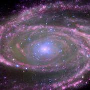Das raten Ihnen die Sterne im Tageshoroskop (Foto)