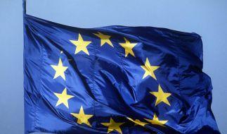 Weht inzwischen auch vor vielen deutschen Rathäusern: Die EU-Flagge. (Foto)