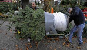 Weihnachtsbaum (Foto)