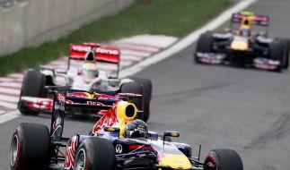 Weltmeister Vettel (Foto)