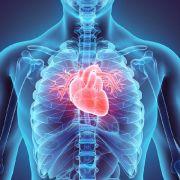 Wenn das Herz aus dem Takt gerät, sind Betroffene oft verunsichert, welche Erkrankung sich dahinter verbirgt. (Foto)