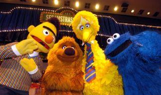 «Wer, wie, was?» - Die «Sesamstraße» wird 40 (Foto)