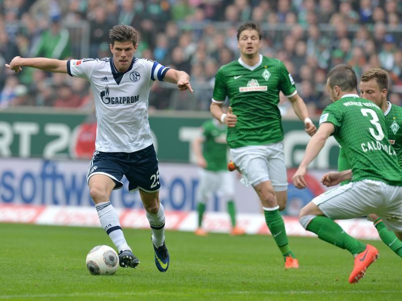 Beste Spielothek in Schalke finden
