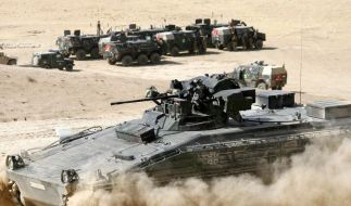 Westerwelle will Afghanistan-Abzug vorantreiben (Foto)