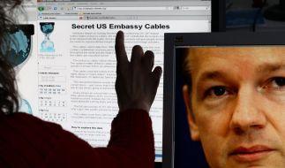 Wikileaks-Adresse im Web abgestellt - aber erreichbar (Foto)