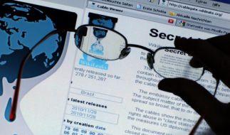 Wikileaks will Informanten besser schützen (Foto)