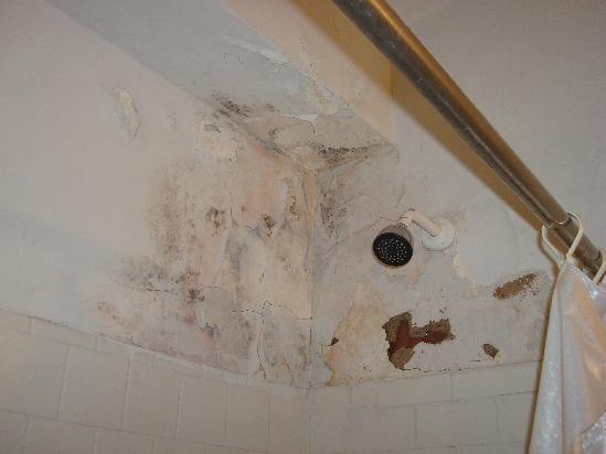 schimmel flecken kakerlaken die schlimmsten hotelzimmer der welt. Black Bedroom Furniture Sets. Home Design Ideas