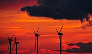 Windpark (Foto)