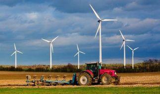 Windräder made in Germany sind weltweit gefragt. (Foto)