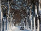 Winter.JPG (Foto)