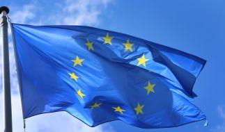 Wohin wird Europa im neuen Jahr steuern? (Foto)
