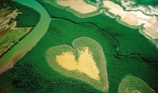 Yann Arthus-Bertrand zeigt der Welt seine Liebe zur Erde. (Foto)