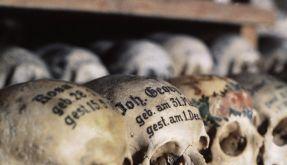 Zentralfriedhof (Foto)