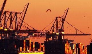 ZEW: Konjunkturzuversicht steigen drastisch (Foto)