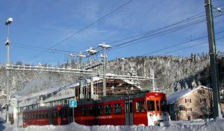 Zug im Schnee (Foto)