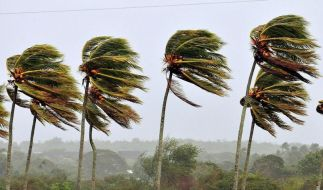 Zyklon: 190 000 Menschen auf Madagaskar obdachlos (Foto)