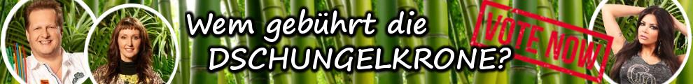 Fotovoto Dschungel 2017