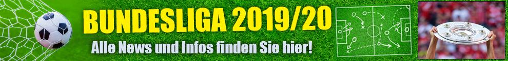Bundesliga 201920