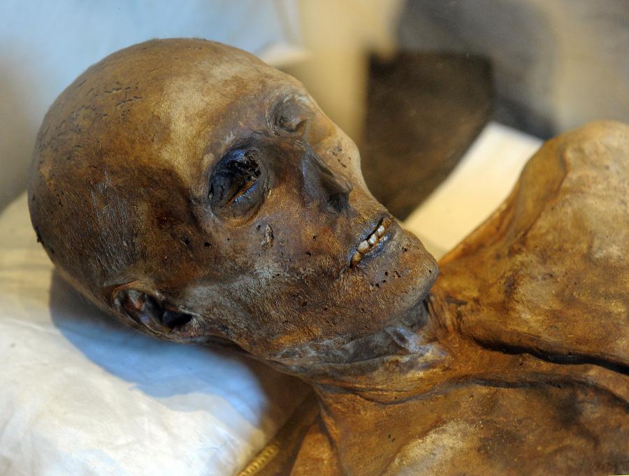 Mumifiziert und verwest: Tochter lässt Mutter vier Jahre