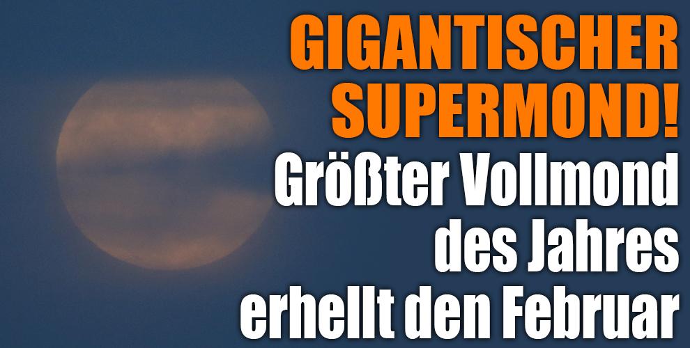 agree, Reiche m nner kennenlernen kostenlos are mistaken. can defend