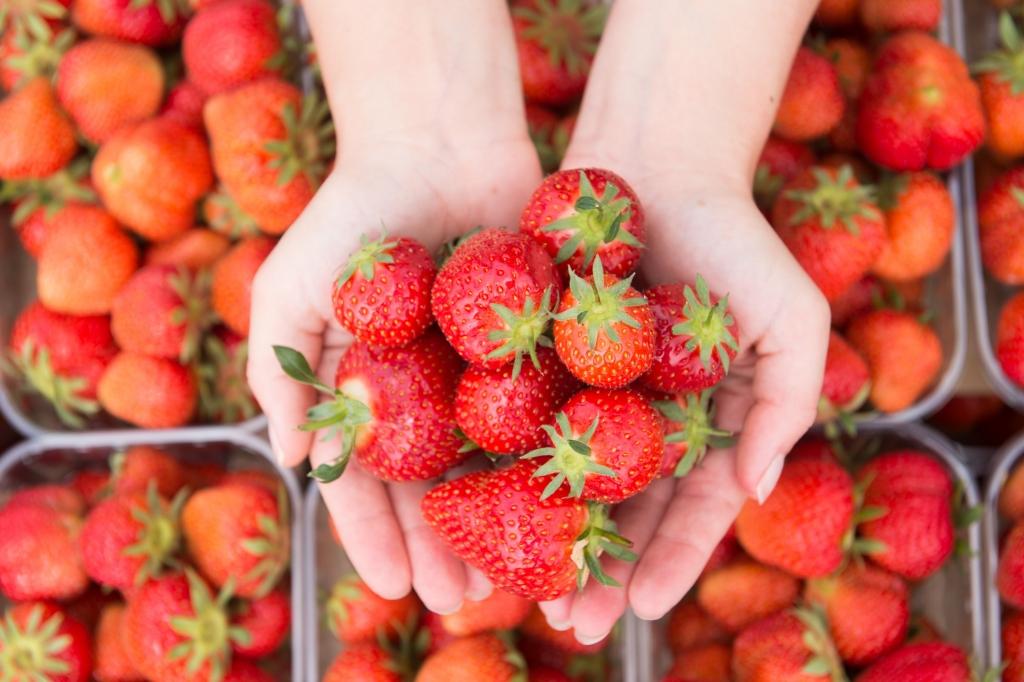 belastetes obst pestizide bei 70 prozent der erdbeeren. Black Bedroom Furniture Sets. Home Design Ideas