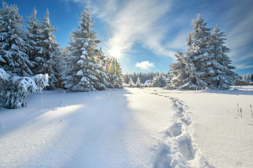 Weihnachten Schnee