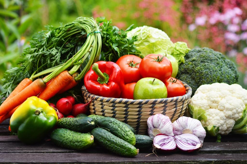 Veggie Sommerküche : Sommerleses bücherkiste leichte sommerküche
