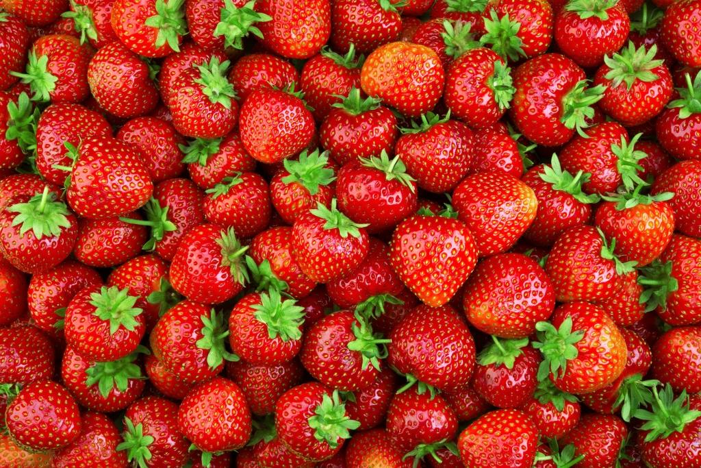 Erdbeeren ägypten Virus