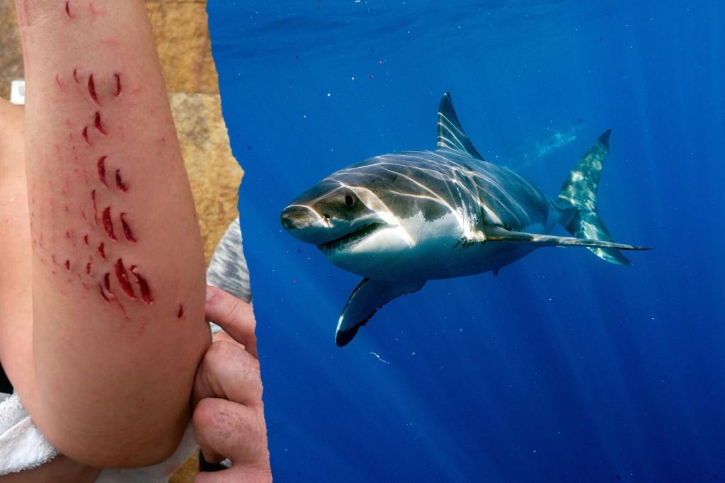 fressen haie menschen