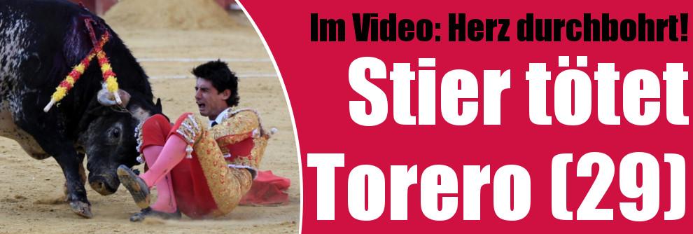 Das erste Mal seit 31 Jahren: Mitten durchs Herz! Stier tötet spanischen Torero (Foto)