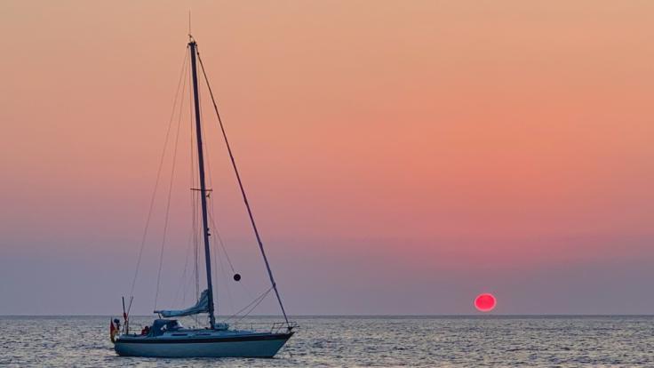 Demi Rose lässt es sich auf dem Meer gut gehen. (Foto)