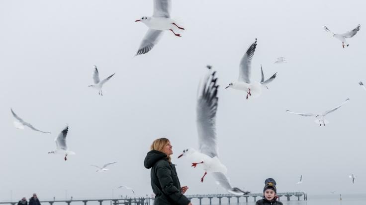 Auch im Winter ist die Ostsee ein schönes Reiseziel. (Foto)