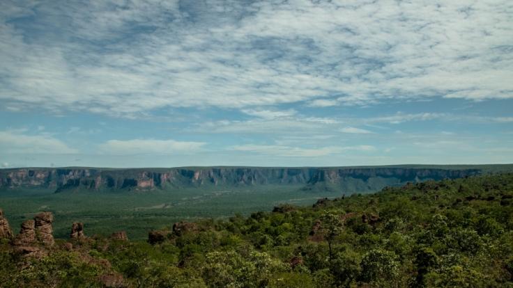 Im westafrikanischen Nationalpark Pendjari wurde ein Reiseführer tot aufgefunden.(Symbolbild)