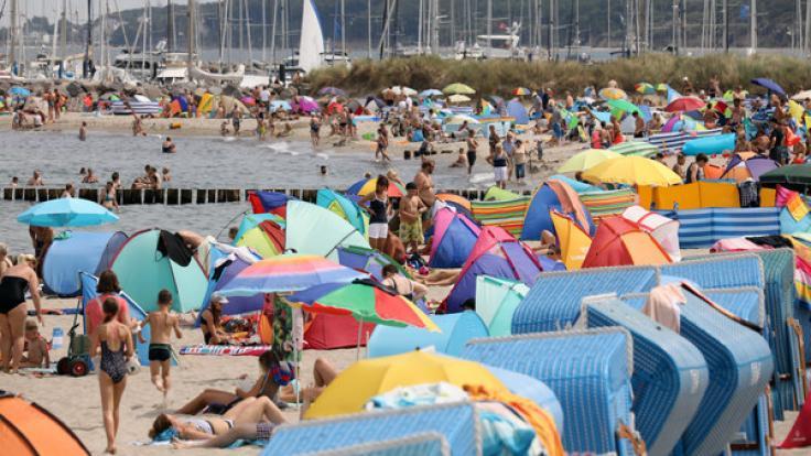 Für gesundheitlich angeschlagene Menschen kann ein Bad in der Ostsee derzeit gefährlich werden.
