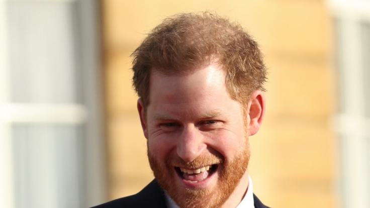 Royaler Fluch! Prinz Harry kämpft gegen Haarausfall. (Foto)