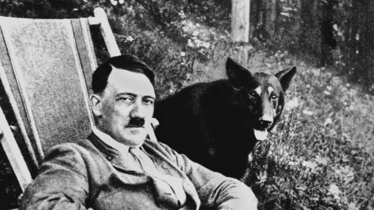 """Der nationalsozialistische """"Führer"""" und deutsche Diktator Adolf Hitler mit seinem Hund (undatierte Aufnahme). (Foto)"""