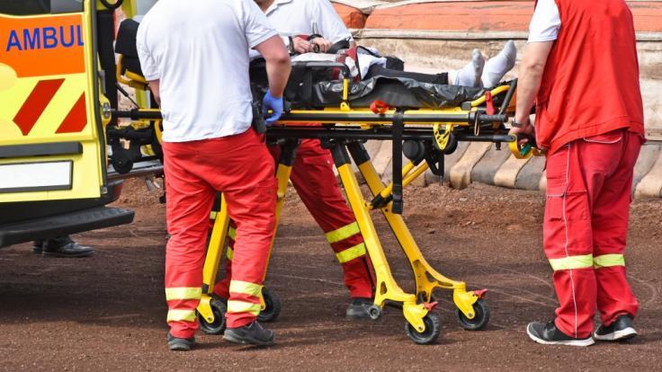 Sänger Buddy musste nach einer Verletzung gerettet werden. (Symbolfoto)