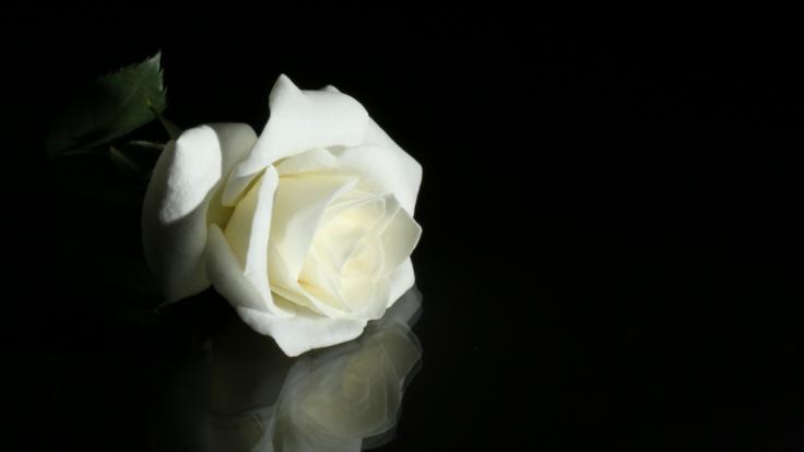 Trauer um Model Nayab Nadeem! Die junge Frau wurde gefoltert und ermordet. (Foto)