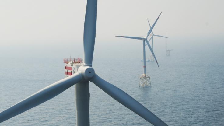 Offshore-Windparks erzeugen Ökostrom.